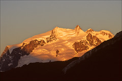 monte rosa sunset (Ron Layters) Tags: pink sunset orange mountain snow nature yellow geotagged switzerland interestingness footprints slide explore velvia transparency zermatt monterosa fujichrome wallis alpenglow valais nordend pentaxmz10 mountainsalps elevation40004500m dufourspitze flickrfly signalkuppe ronlayters slidefilmthenscanned geo:lat=459397 geo:lon=785733 4634m summitmonterosa altitude4634m highestpositioninexplore260onsaturdayoctober112008