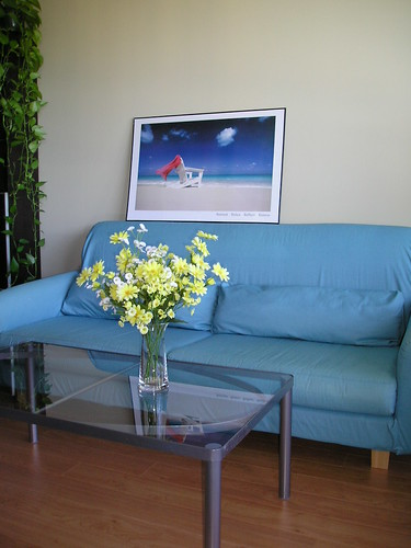 IKEA Sofa and Coffee Table