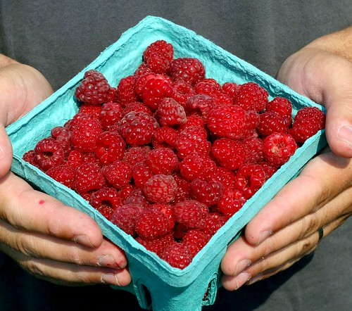 Linvilla raspberries