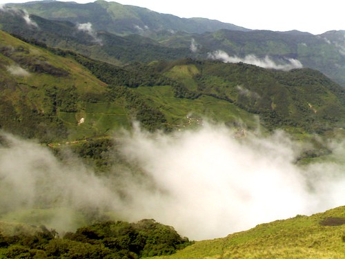 Munnar - nature defying imagination