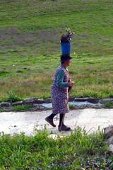 Balurcos - Carrying the lavender (muffinn) Tags: portugal fashion oldwoman quaint carrying useyourhead balurcos