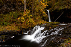 Fall IS Here (Dan Sherman) Tags: autumn trees fall water leaves creek flow waterfall rocks pacificnorthwest buttecreek scottsmills buttecreekfalls oregonwaterfall crookedfingerrd scottsmillsoregon crookedfingerroad lowerbuttecreekfalls waterfallsandtrees danshermanphotography