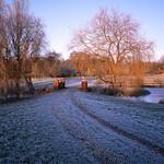 Windlesham Morning