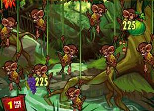free Queen of the Jungle smoothie bonus game award