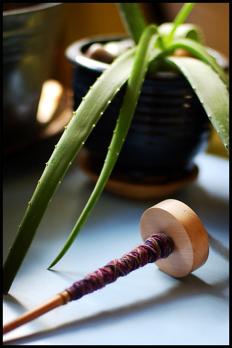Spindle with Aloe