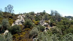 11b. Untouched landscape