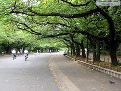 "Ueno Park <a style=""margin-left:10px; font-size:0.8em;"" href=""http://www.flickr.com/photos/24828582@N00/1312538887/"" target=""_blank"">@flickr</a>"
