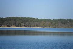 Feisneck (ThomasKohler) Tags: lake nature see natur teich mv mecklenburg feisneck seenplatte feisnecksee
