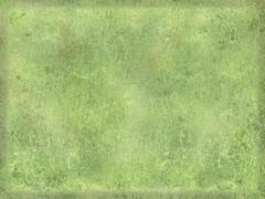 Kiwi Smoothie-texture