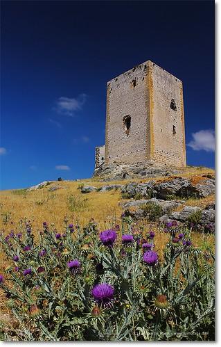 Subida al castillo de Teba