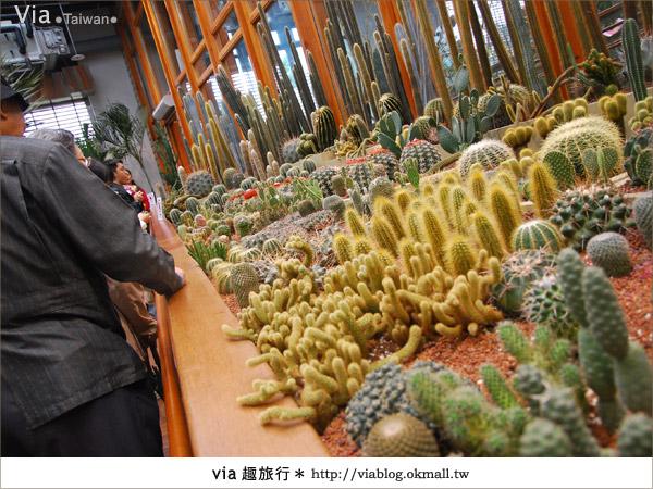 【花博夢想館】via遊花博(下)~新生三館:花博夢想館及未來館、天使生活館8