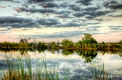 Natural Reflections (Tim Azar) Tags: blue sunset reflection green water grass clouds river landscape florida everglades hdr wildliferefuge loxahatchee loxahatcheenationalwildliferefuge arthurrmarshall topazadjust photomatixpro4 timazar hdrphotomatixpro4