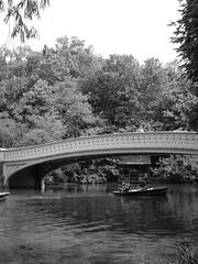 DSC00204 (vpvasquez8) Tags: nyc newyorkcity bridge newyork centralpark metropolis bowbridge