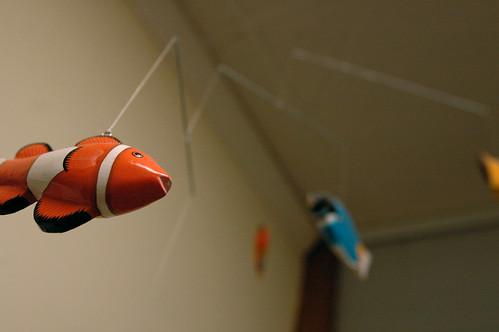 fishege1