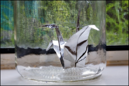 we went out after dinner and caught paper cranes in mom's canning jars