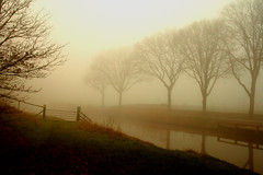 fog (hoogmoet) Tags: trees mist water fog bomen bravo searchthebest soe supershot mywinners abigfave shieldofexcellence platinumphoto superbmasterpiece diamondclassphotographer