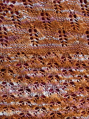 bee shawl 2