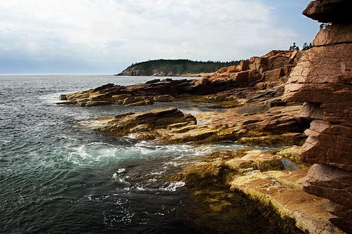 The Rugged Coast of Acadia