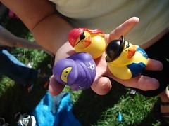 Pirate (and ninja) rubber duckies
