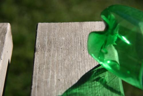 Sunlight through a Green Plastic Bottle