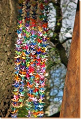 Rainbow of origami birds ( Popotito ) Tags: wood tree art texture textura argentina colors birds japan arcoiris arbol japanese rainbow madera buenosaires origami colorful arte colores pajaros hanging japon japones japanesegardens handcraft artesania jardinjapones colgando coloreados colourartaward popotito