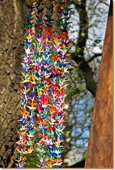 Rainbow of origami birds ( Popotito ) Tags: wood tree art texture textura argentina colors birds japan arcoiris arbol japanese rainbow madera buenosaires origami colorful arte colores pajaros hanging japon japones japanesegardens handcraft artesania jardinjapones colgando coloreados colourartaward popotito