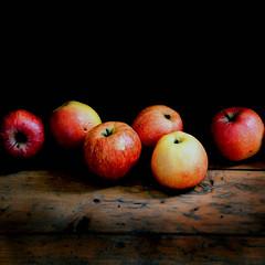 Autumn's Bounty (naughton321) Tags: autumn stilllife apples gtaggroup