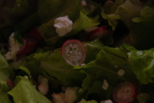 pei tsai salad (from the CSA box) with local radishes and chevre
