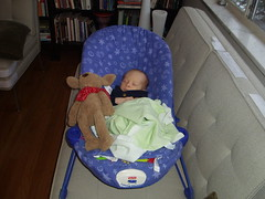 One day he'll be able to beat up that bear (thomasgratch) Tags: christmas maya ravi 2008