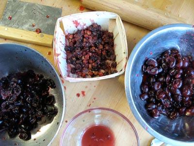Pitting Cherries by Hand.jpg