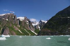 Le Conte Glacier side cirque (bud_marschner) Tags: alaska glacier leconte mywinners onlythebestare