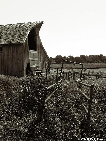 Livestock Chute and Barn