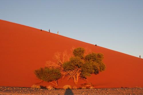 Big Dunes