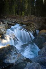 Sunwapta Falls (Shelton Muller, Photographer) Tags: canada mountains nikon rocky waterfalls shelton muller sunwapta fiveminutephotographercom fiveminutephotographer wwwfiveminutephotographercom httpsheltonmullerblogspotcom