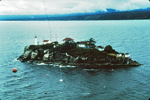 chrome_island_2.jpg