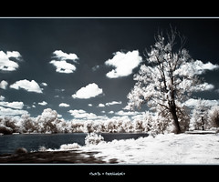Saute mouton [EXPLORED] (keoch (Very Busy)) Tags: france tree water ir nikon eau d70 sigma infrared neige arbre picardie hoya tang somme 720nm infrarouge ir72 infrard heilly