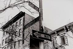 Gay Street (jewdarican) Tags: street new york original white black streets slr art film brooklyn darkroom project print photography nice pentax k1000 bronx harlem manhattan queens negative lionel portfolio tones woodside ghetto crowds density torres jewdarican