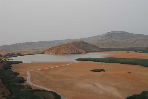 بلادي الجزائر الحبيبة 704576342_b6e5785758.jpg