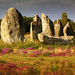 Carnac.Setting - by Chris (archi3d)