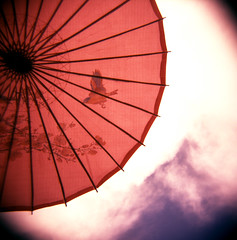 Rachael Ashe: Holga shot of Parasol
