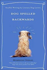 Dog Spelled Backwards