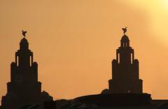 Royal Liver Birds, a Liverpool evening (Ianmoran1970) Tags: sunset sky orange sun birds liverpool evening liver royalliverbuilding fiatlux ianmoran ianmoran1970
