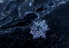 [フリー画像] テクスチャ・背景, 水・氷, 雪, 201011102300