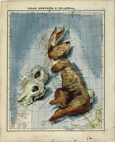 great britain and ireland as rabbits