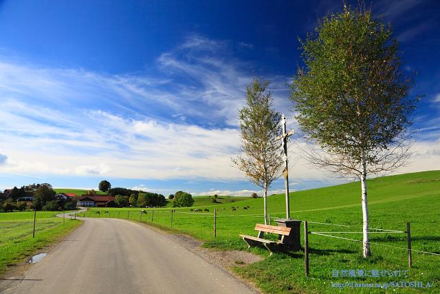 ベンチと青空と道