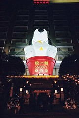 snoopy hotel