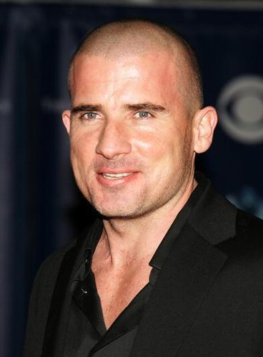 dominic_purcell