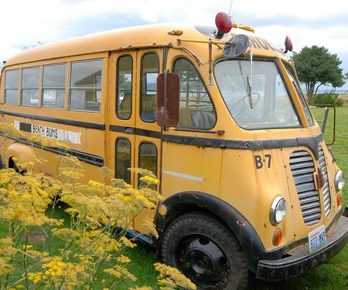 Old Short School Bus Old Short School Bus