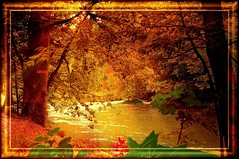 Autumn (nature1955) Tags: soe breathtaking themoulinrouge naturesfinest blueribbonwinner instantfave worldbest platinumphoto superaplus aplusphoto favoritegarden superbmasterpiece goldenphotographer superhearts flickrphotoaward naturewatcher colourartaward excapture thegoldenmermaid proudshopper theperfectphotographer