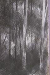 Drawings 088